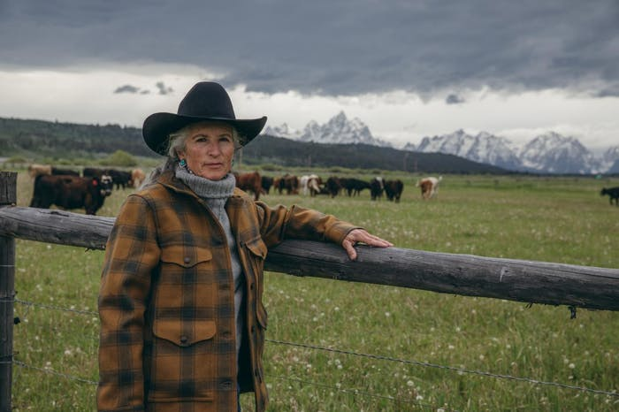 jane standing next to a fence with cattle and mountains in the background