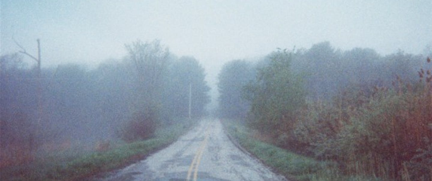 Matt Blodget foggy asphalt road disappears to the tree-lined horizon