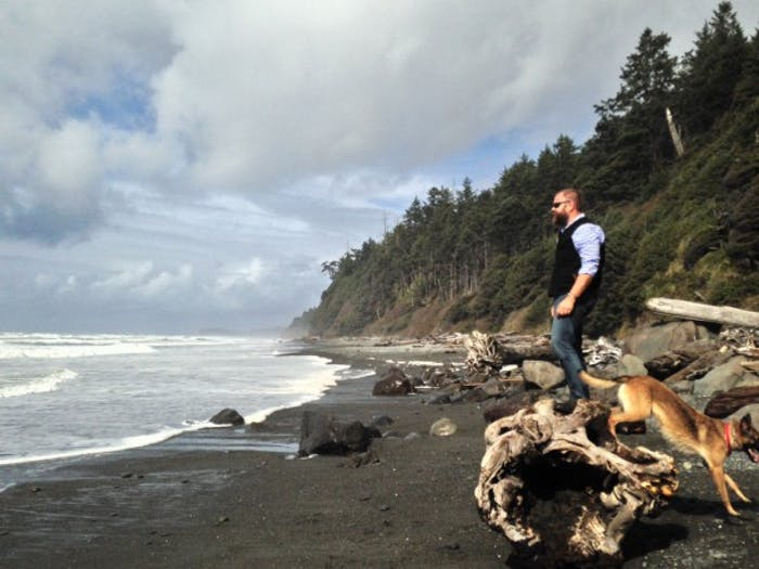 Man in black vest and german shepherd stand on driftwood on beach looking at the water