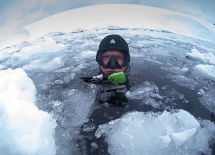 alyssa adler head above water before scuba diving in arctic water with ice floats and snow