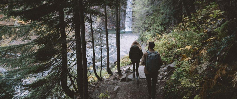 two people walk toward frankin falls on wooded path
