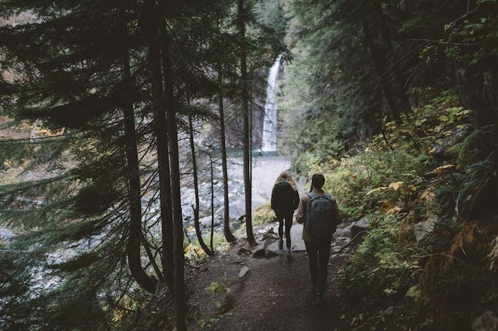 people hiking toward waterfall on forest path