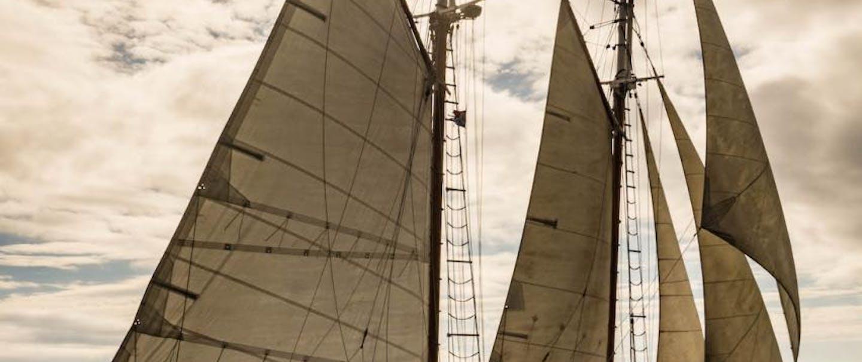 will-kutscher-dirigo-II sailboat with white sails on the water