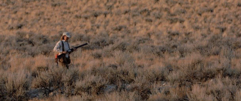 hunter walks among sage brush at dawn