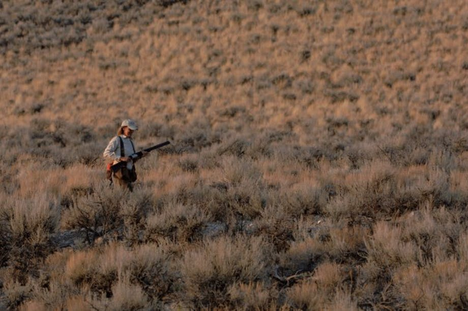 hunter walks among sage brush at dawn