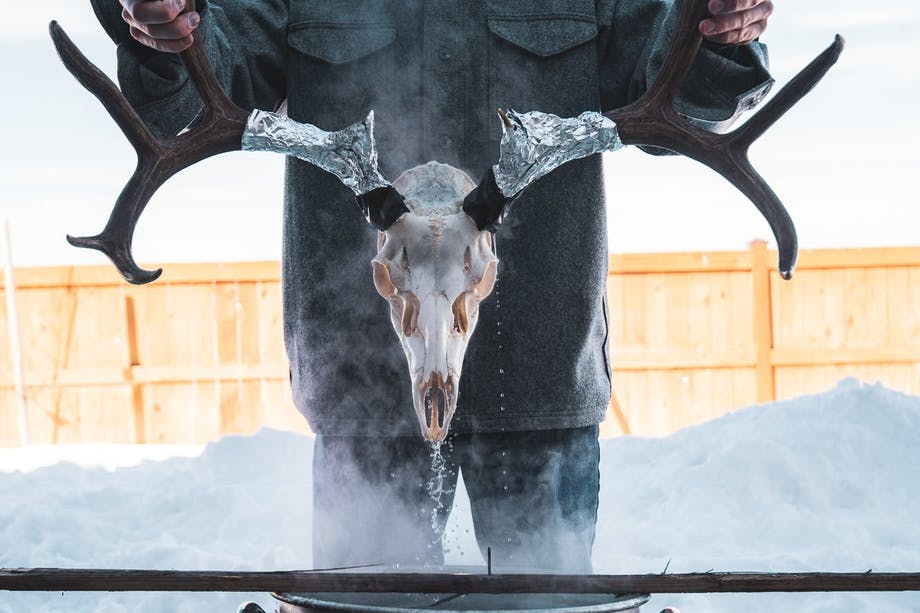 person in snowy yard lowering elk skull with antlers into steaming pot