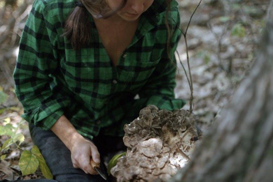 woman with green plaid shirt harvest Dancing Signorina Mushroom at Bear Cave Place