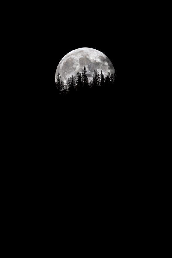 Harvest Moon 2012