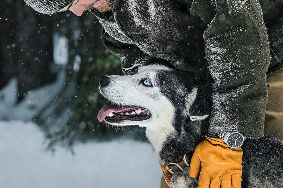 Filson Life - Elliot Anderson - Dogsledding dog with master in filson black coat and gloves