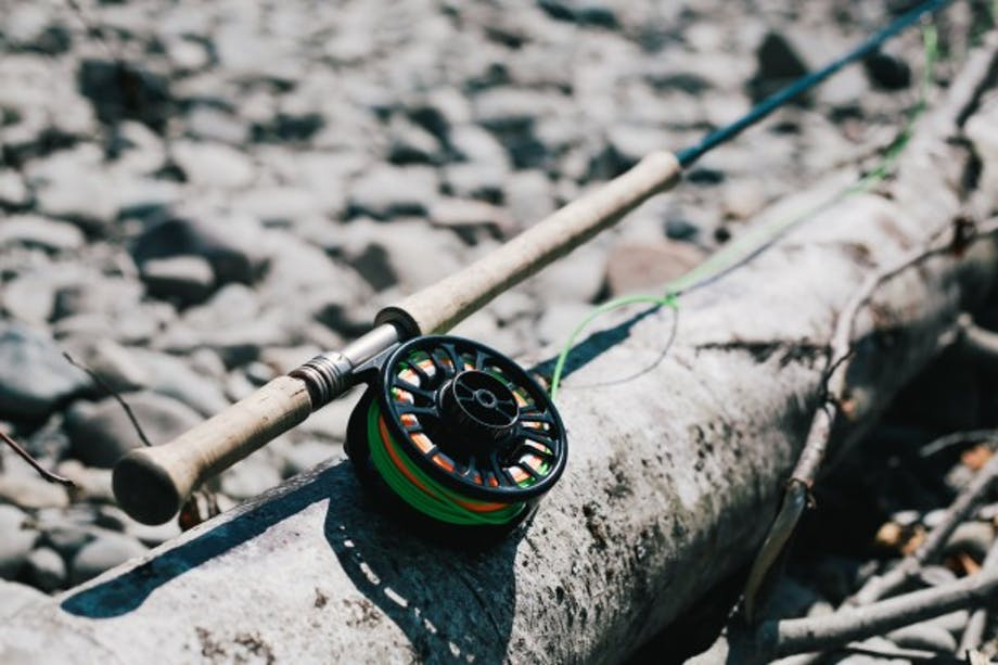 Fly fishing rod resting on a downed tree with green fishing line in spool