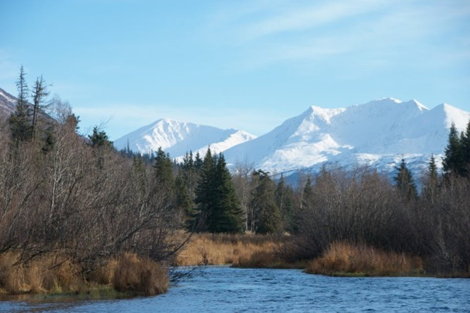 river runs from large snowy mountains through pine and scrub forest