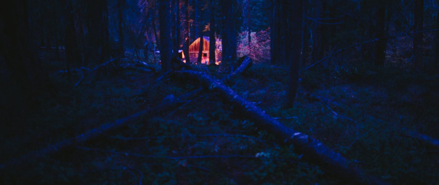 cabin glows in dark pine forest at nighttime