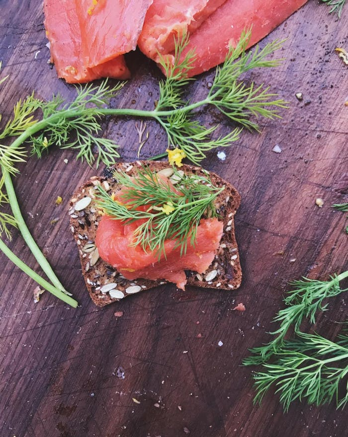 salmon gravlax with dill fronds and brown rye bread