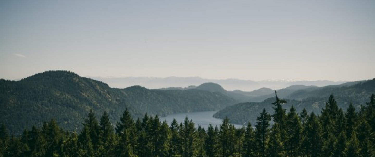 vista of pine-covered rolling hills with large meandering river disappearing into horizon
