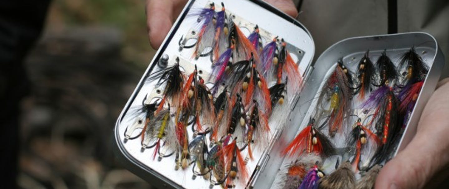 Hands hold Flybox full of fly-fishing flies - Judith O'Keefe