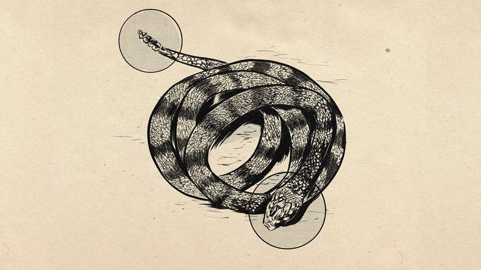 drawing of coiled rattlesnake with head and tail highlighted