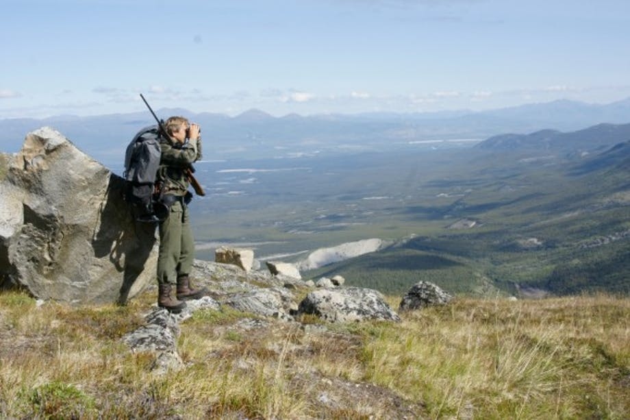 man with hunting pack and gun surveys green vista from hill-top with binoculars