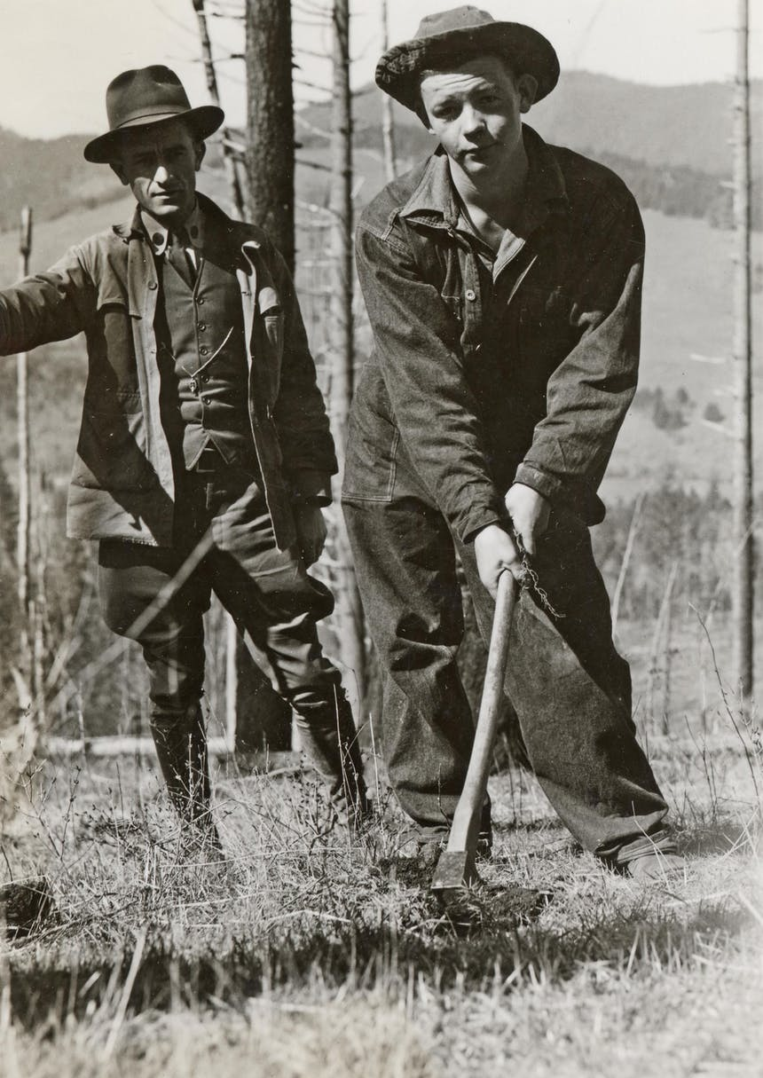 historic image of men working in forest
