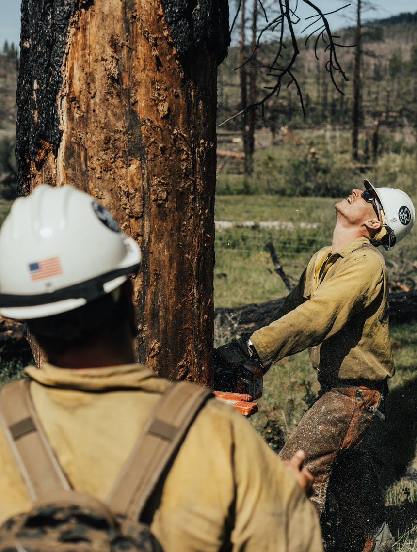 veterans hot shot crew chainsawing large burnt tree