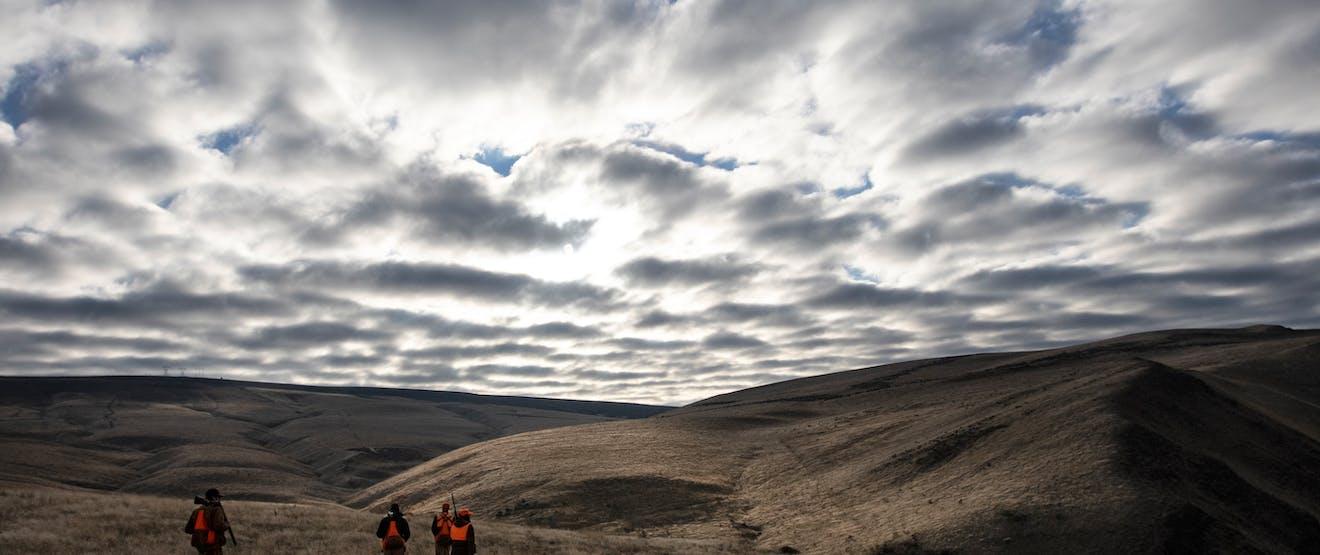 hunters walking down grassy ridge