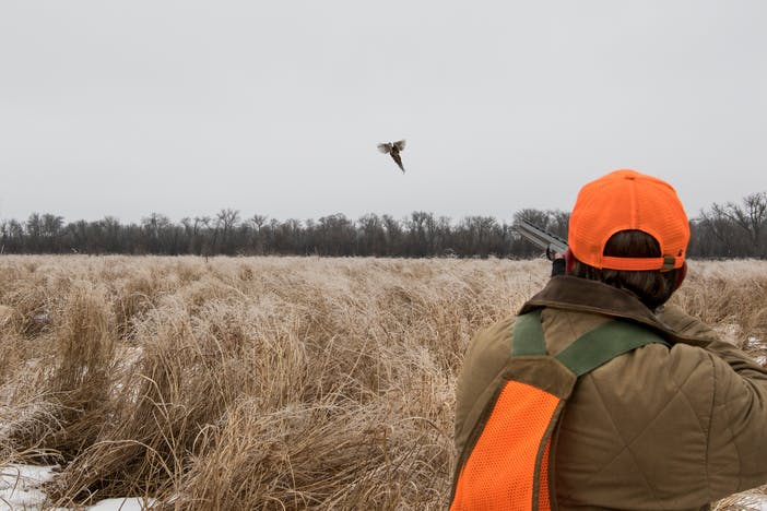 hunter wearing brown jacket, blaze orange ball cap and game bag vest aiming shotgun at a bird flying out of the dry dead grass