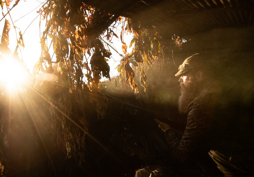 man wearing camo hunting hat and jacket in his duck blind covered in tree branches and leaves as the sun is rising, with rays of light penetrating the blind