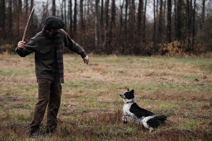 man in forest field throws stick for excited black and white dog