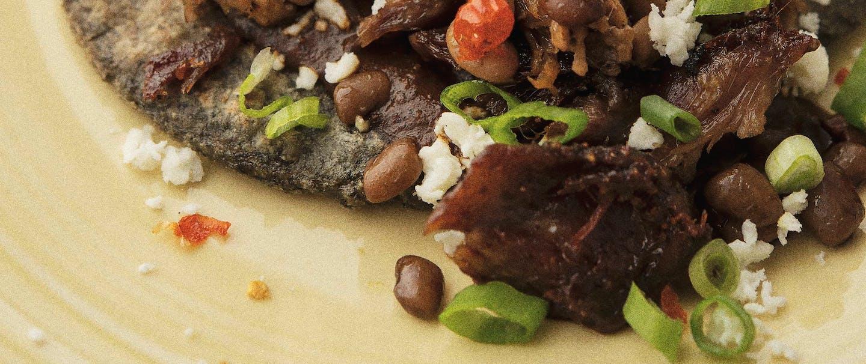 Squirrel Carnitas tacos on blue corn tortilla