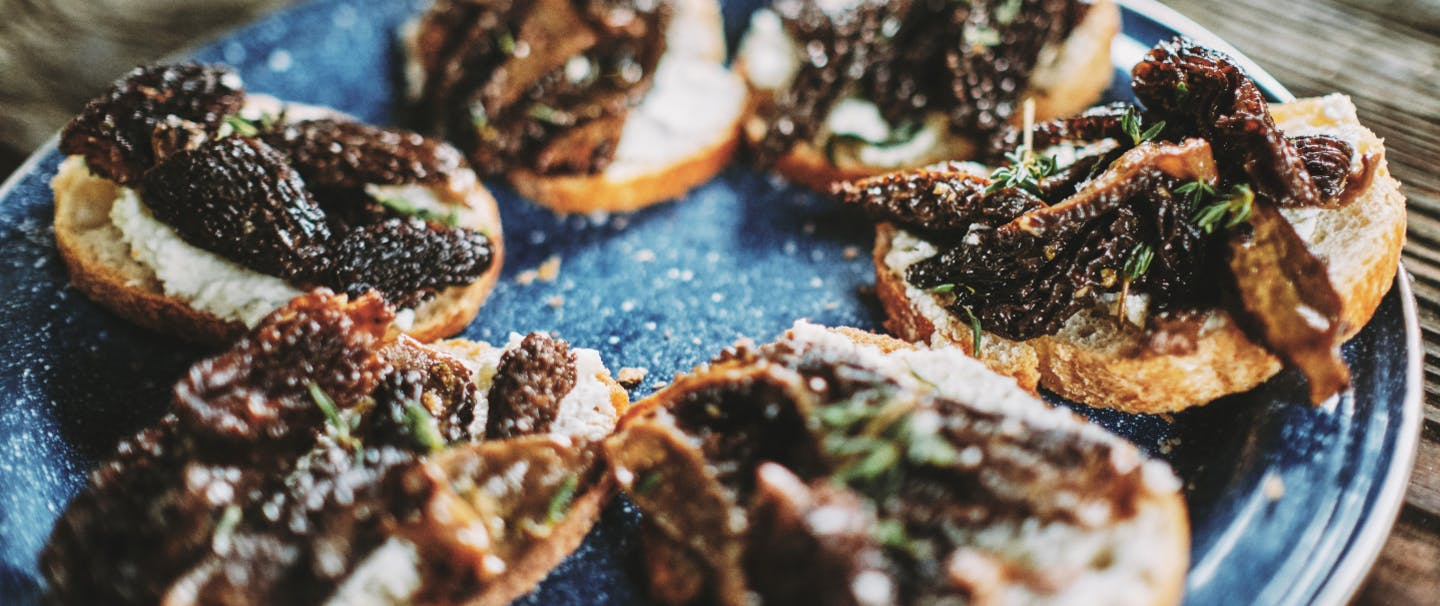 Halved morel mushrooms on top of bread with ricotta spread and herbs on a blue plate