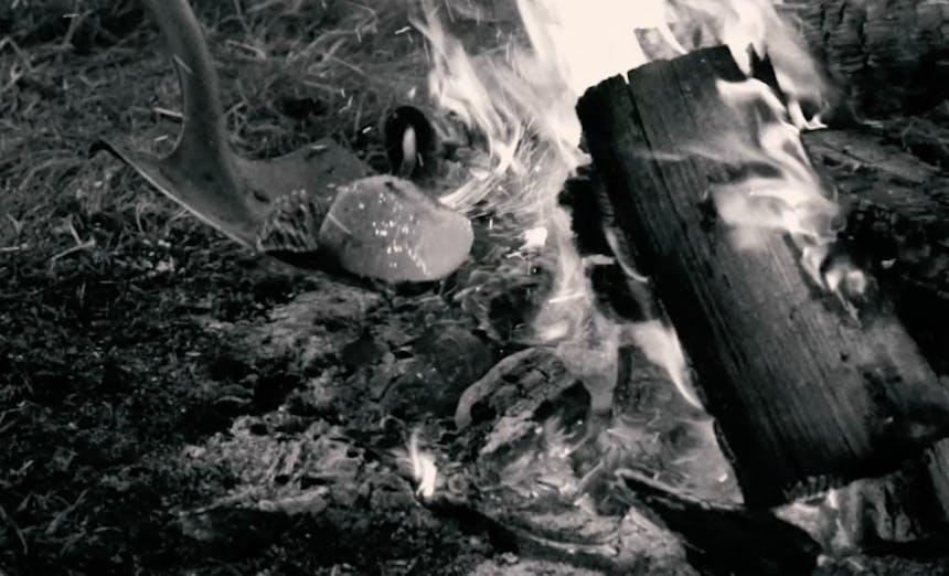 backwoods-steam5