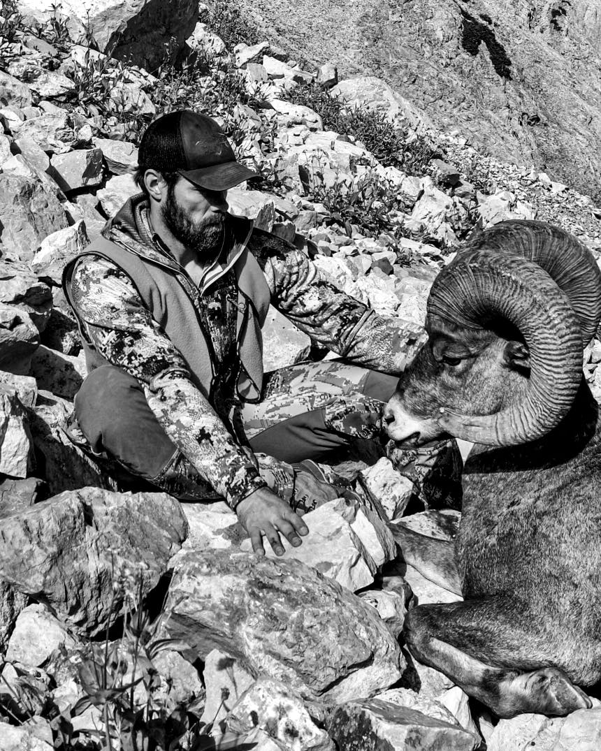 man in camouflage shirt and vest on a rocky hillside next to a kneeling bighorn sheep