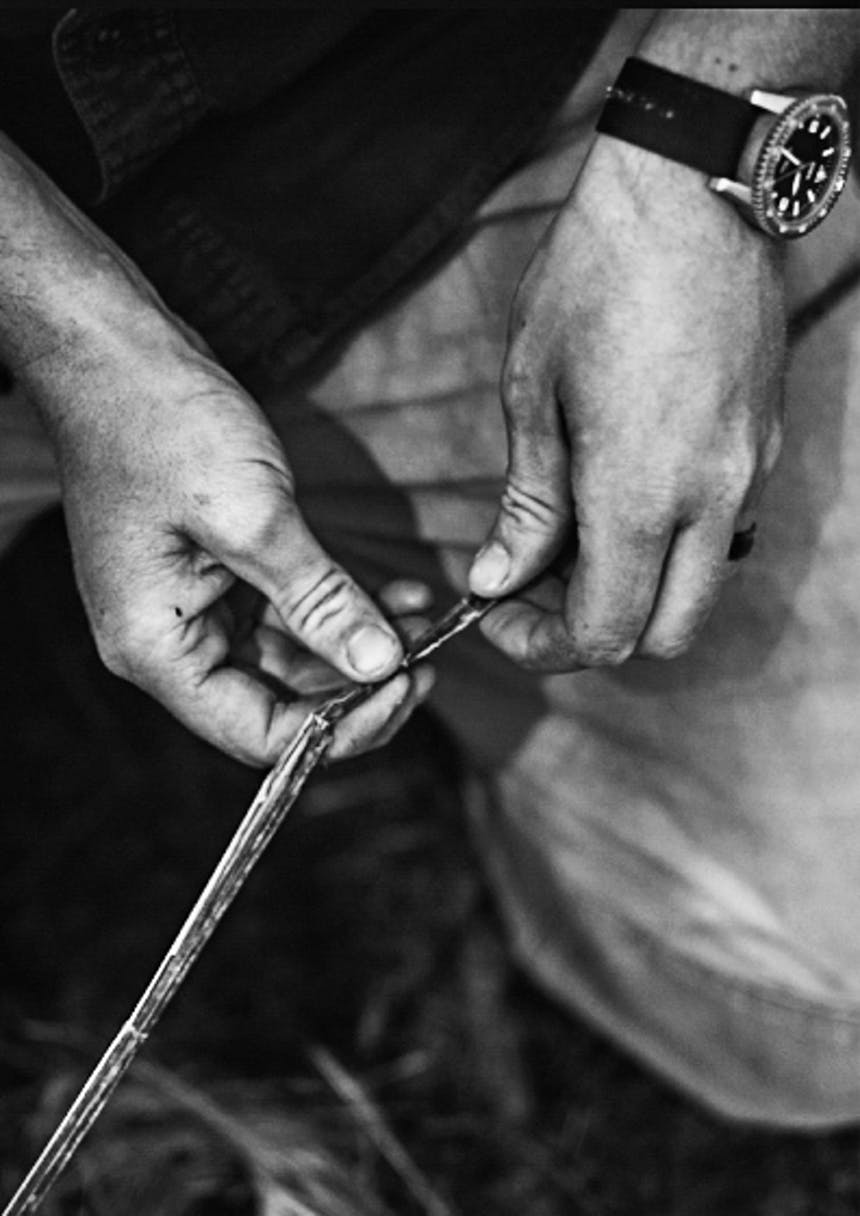 black and white image of hands manipulating stinging nettle fibers to make cordage