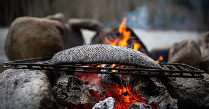 a beaver tail roasting on a grate over red hot coals in a firepit