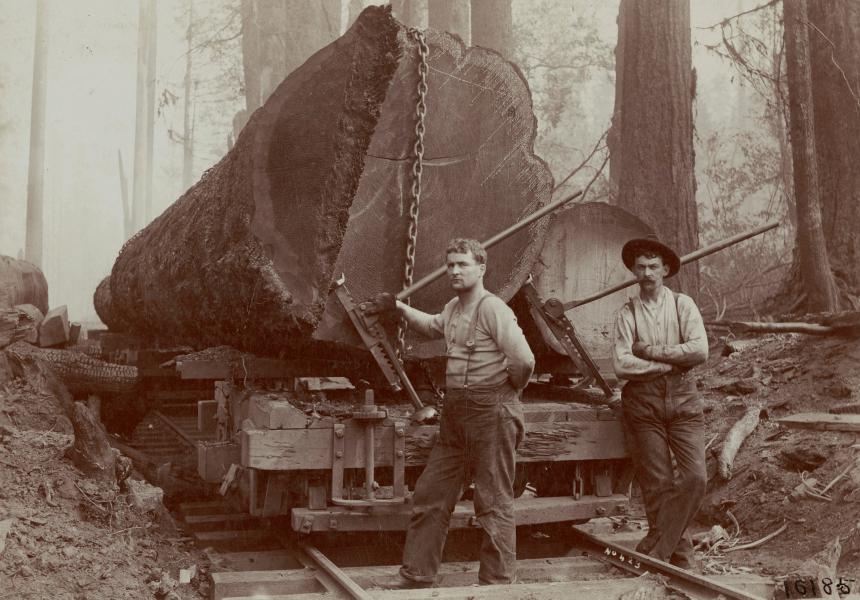 How to Build a Backyard Sawmill_1