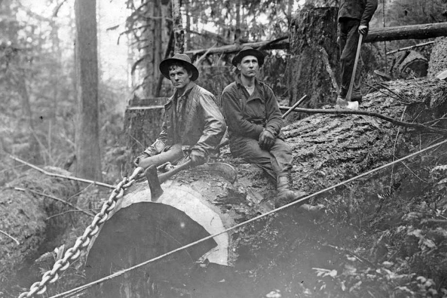 two loggers sitting on a huge log with a large chain attached in a forest