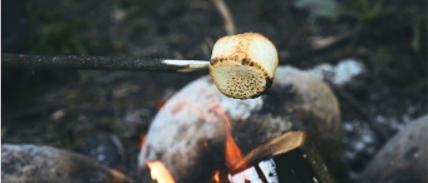 marshmallow on a sharpened stick toasting over a fire