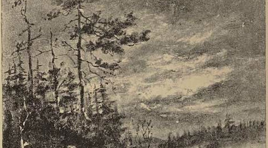 old grainy black and white drawing of a forest