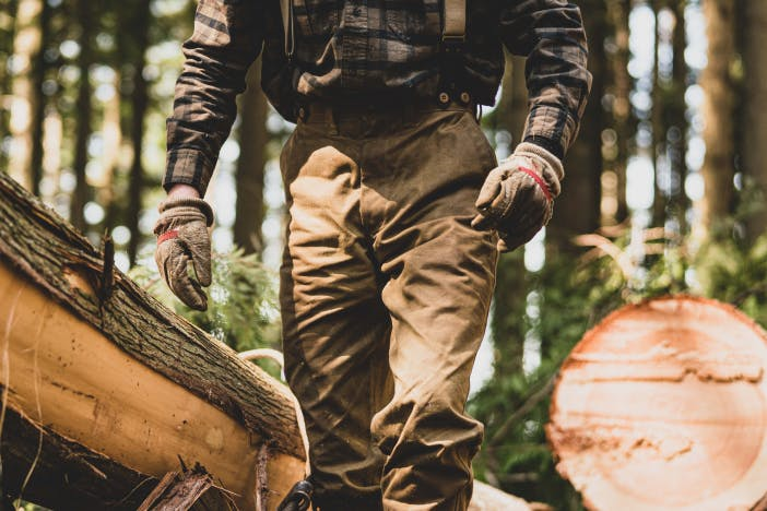 person in brown pants and brown plaid shirt walking amongst downed logs