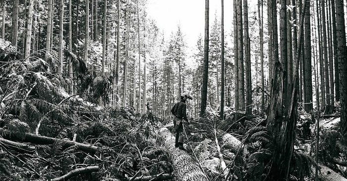 loggingsocial
