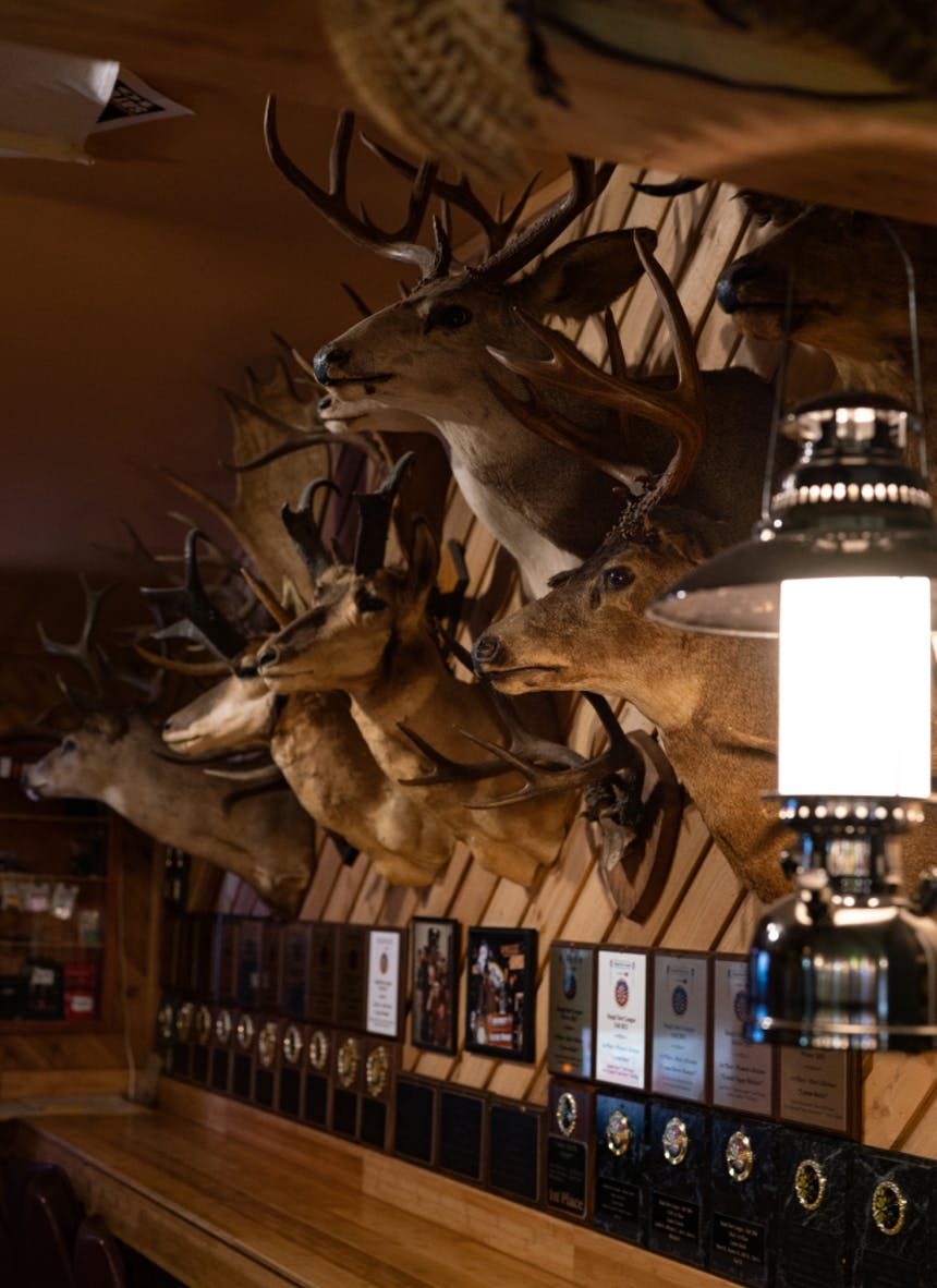 interior of the lyman tavern. wall with many elk busts attached to the wall