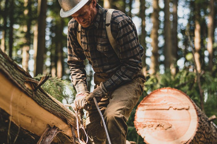 a lumberjack tying cord around cut, downed timber