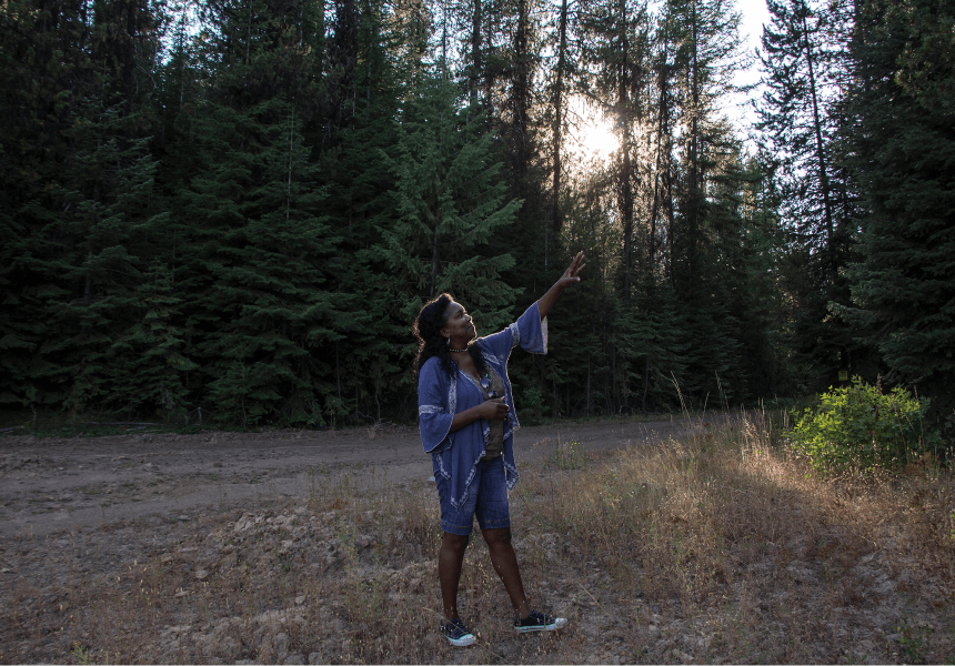 woman in purple sweater points up toward the canopy of conifers in a meadow