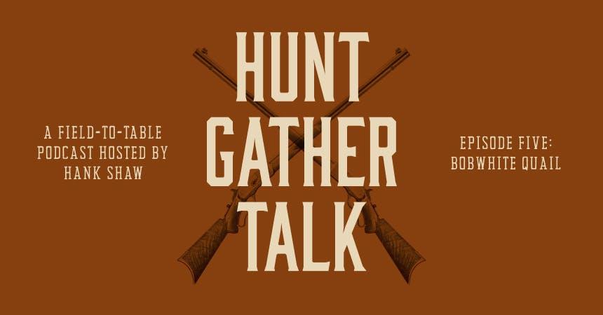hgt-podcast-qual-hero