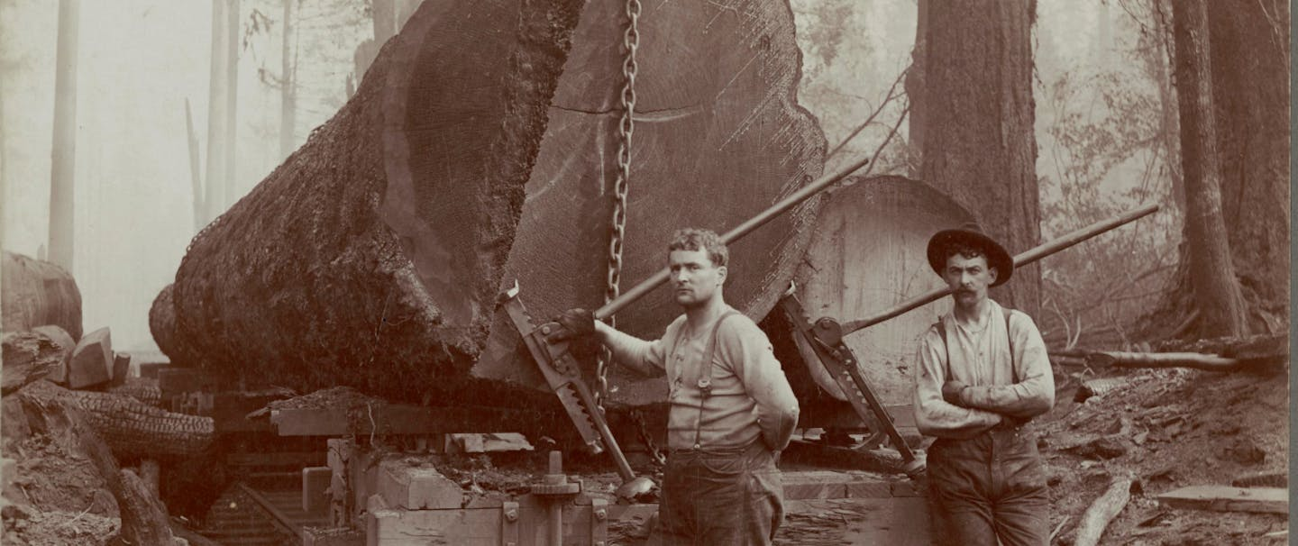 two loggers standing next to a railway bed on rails with huge tree trunks chained to the beds