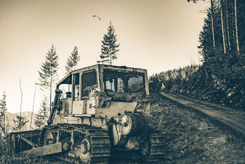 a bulldozer parked on a dirt path in a pine forest