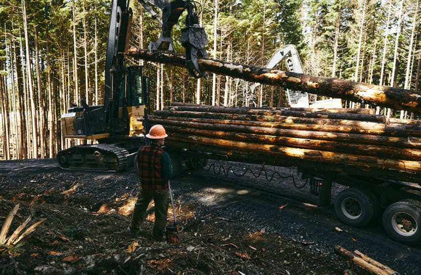 logger standing next to a trackhoe placing cleaned logs onto a semi truck bed