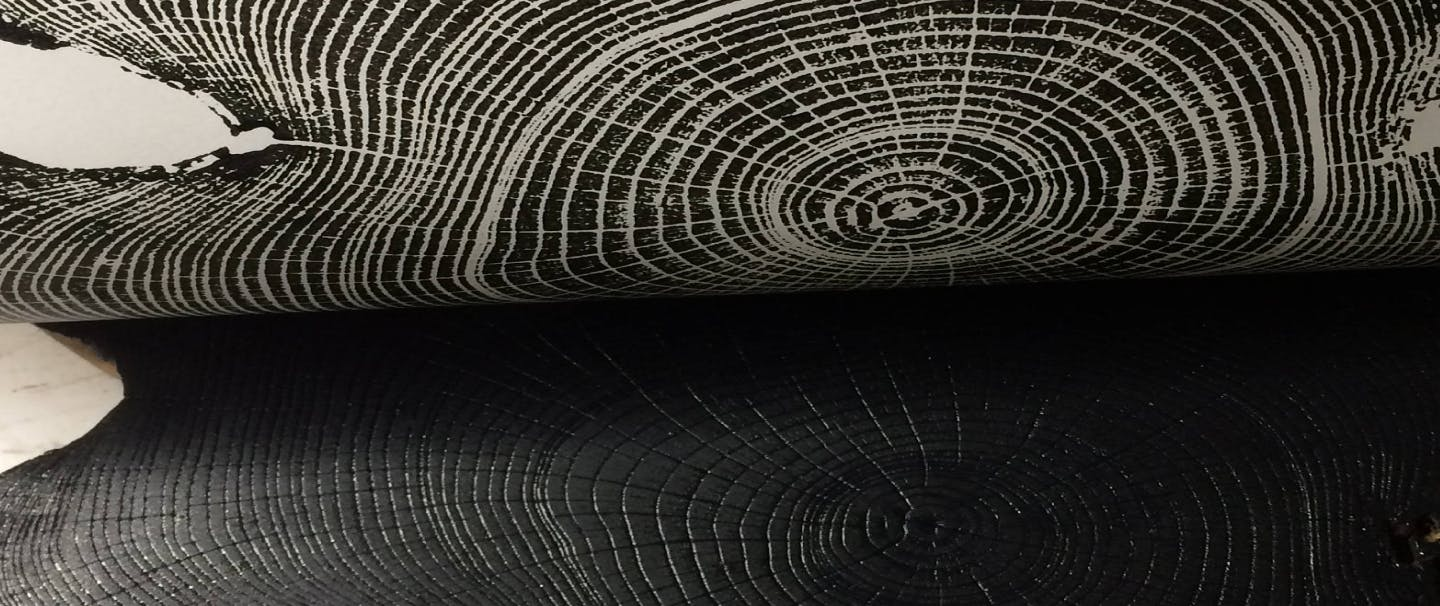 an ink pressing of the rings of a large tree trunk
