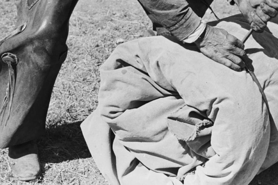hands of a person in chaps tying a large roll of canvas in a field