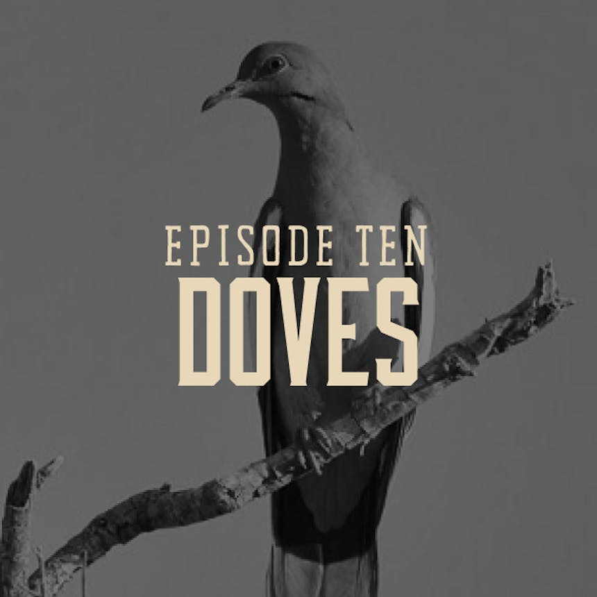 dove-hunting-podcast-cover-art