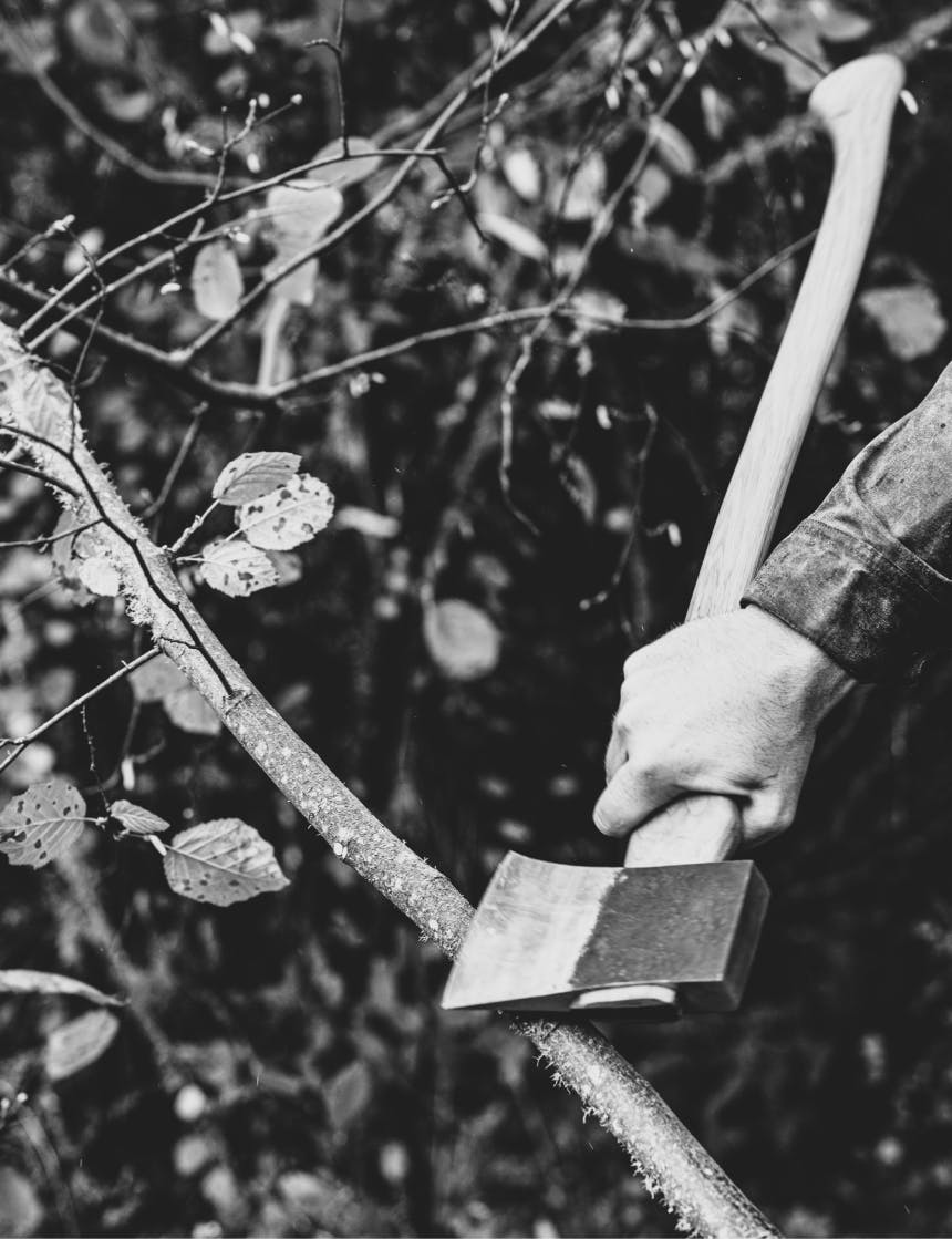 hand holding an axe in the woods